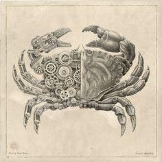 Hand-Drawn Steampunk Crustaceans Powered by Gears Steampunk Kunst, Steampunk Drawing, Animal Drawings, Art Drawings, Awesome Drawings, Pencil Drawings, Ancient Paper, Portrait Au Crayon, Steampunk Animals