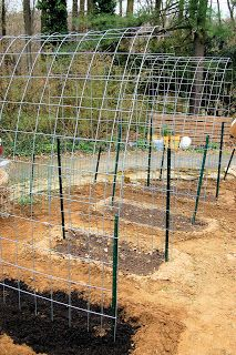 The Bumbling Gardenista: tomato arbors
