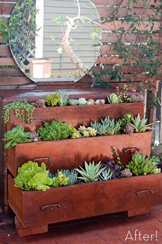 Old dresser turned into a tiered succulent container garden — Not really my style but cute!