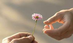 5 preuves de maturité dont l'amour a besoin – Nos Pensées