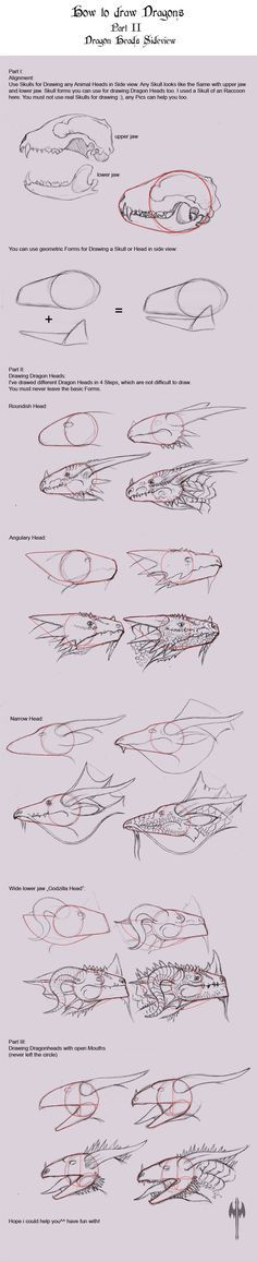 A small Tutorial for drawing Dragons in side views^^ More Tutorials will come soon, i hope.^^ How to draw Dragons Part One Animal Drawings, Art Drawings, Dragon Sketch, Poses References, Dragon Art, Dragon Head Drawing, Dragon Drawings, Drawing Techniques, Creature Design