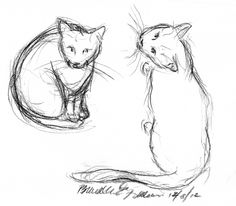 The Creative Cat - Daily Sketch Reprise: What Are You Doing Up There?