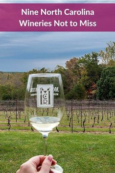 North Carolina wineries make sophisticated varietals and blends on par with some of the best wineries in the country. Step inside nine wineries in the Yadkin Valley to see what they have to offer.