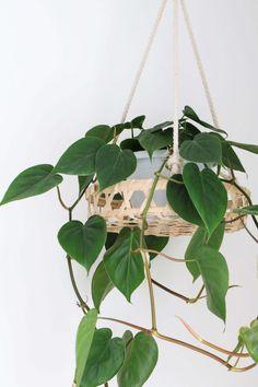 MY ATTIC voor KARWEI / hangplant / hanging plant / plantenhanger Photography: Marij Hessel