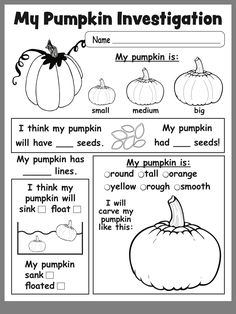 Free Printable Pumpkin Investigation Worksheet (use as group activity at circle, preschool is no place for worksheets) 1st Grade Science, Elementary Science, Preschool Kindergarten, Elementary Schools, Kindergarten Centers, Preschool Themes, Preschool Printables, Preschool Worksheets, Fall Preschool