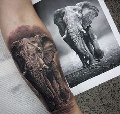 Hyperrealism Elephant Tattoo by Coen Mitchell Tatoo Elephant, Realistic Elephant Tattoo, Elephant Tattoo Design, Elephant Art, Animal Sleeve Tattoo, Lion Tattoo Sleeves, Animal Tattoos, Sleeve Tattoos, Tatoo Art