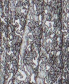 Kasper Metallic Jacquard Sheath Dress - Silver 16