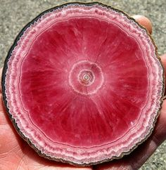 In 2002, rhodochrosite was named the Colorado state mineral. Now closed, the Sweet Home mine in Alma, CO once produced the highest quality rhodochrosite in the state. Though other mines actively produce this collector's mineral, it remains relatively rare. Its deep red color is stunning even in its natural state. Gem cutters rarely cut this gem. /  https://www.gemsociety.org/article/colorado-gemstones-guide/