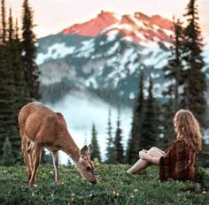 Deer Paintings, Gif 2, Horses, Nature, Mountains, Travel, Animals, France, Family Vacations