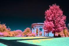 """Sunday"" 2017 Infrared photography Joshua B Huitz"