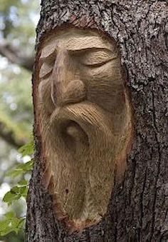 Wise Old Man Tree Carving