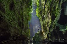 Claustral Canyon, Blue Mountains, NSW
