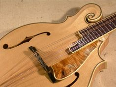 Andy Manson | Fine Instrument Luthier | Hand Built Guitars And Mandolins | Home