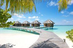Die besten Hotels und Resorts auf den Malediven & Co. - TRAVELBOOK.de