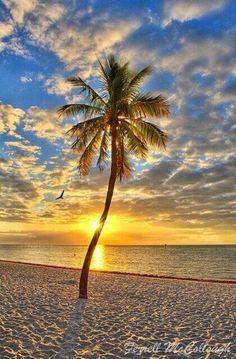 Sunset Places around the world