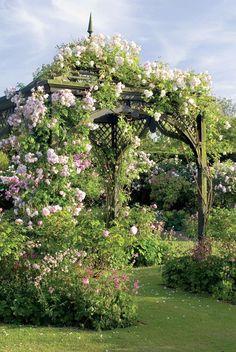wooden garden pavilion with climbing roses. gazebo da giardino in legno con rose rampicanti in fiore. Rose Arbor, The Secret Garden, Garden Gazebo, Garden Cottage, Garden Junk, Wooden Garden, Climbing Roses, Enchanted Garden, Garden Structures
