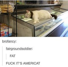 Please tell me that isn't fotoshop and Americat is real and out there!