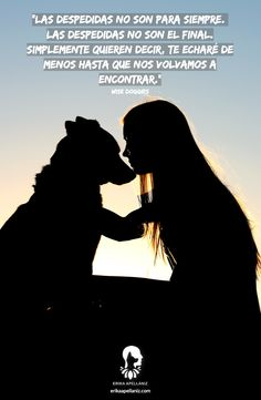 gerlsfrinds - 0 results for animals Love Pet, I Love Dogs, Cute Dogs, Big Dog Toys, Pet Loss Grief, Love Phrases, Frases Tumblr, Chihuahua Love, Mundo Animal