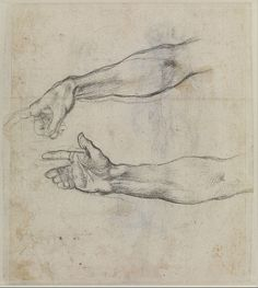 File:Michelangelo Buonarroti - Studies of an outstretched arm for the fresco 'The Drunkenness of Noah' in the Sistine Chapel - Google Art Project.jpg