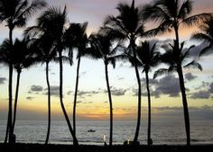 A Dream Vacation in Maui. Go check out our newest blog.