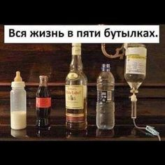Whiskey Bottle, Vodka Bottle, Russian Jokes, Funny Expressions, Text Quotes, Life Memes, Just Kidding, Adult Humor, Mood Pics