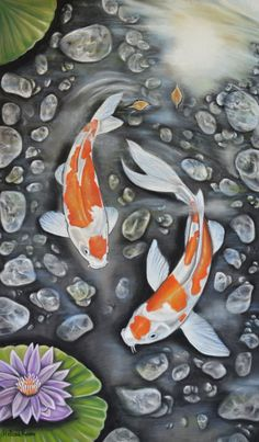 Art Koi, Fish Art, Fish Drawings, Cool Art Drawings, Watercolor Fish, Watercolor Sketch, Koi Kunst, Crayons Pastel, Soft Pastel Art