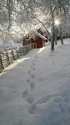footprints in the snow heading for a cabin