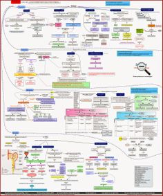 Zoom out - Pharmacotherapy: Drug-drug Interactions Concept Map | Pharmacokinetic Drug Interactions | Pharmacodynamic Drug Interactions. One unique picture on mechanisms of drug-drug interactions with 40 example of interactions.