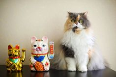 {Lucky Cats} by Kelly West Mars