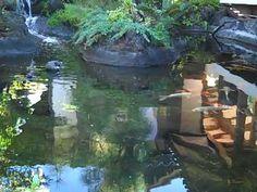 ▶ Healing of Addictions with Archangel Raphael, Doreen Virtue - YouTube