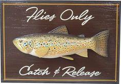 Brown Trout- Matt Zudweg  #flyfishing #fly #fishing
