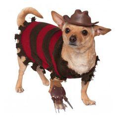 caperucita roja disfraz perro - Buscar con Google
