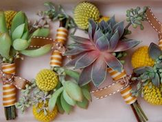 succulents, billy balls, seeded eucalyptus. So different for the Boutineers!! I love it!