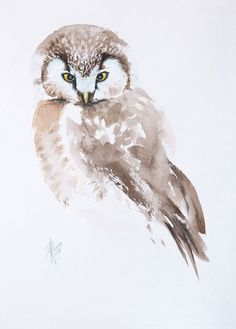 Buy Boreal Owl, Watercolour by Andrzej Rabiega on Artfinder. Discover thousands of other original paintings, prints, sculptures and photography from independent artists.