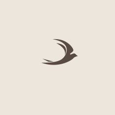 Swallow bird abstract vector logo design template vector art illustration