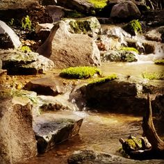 A new Pondless Waterfall & Stream.
