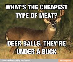 Deer Balls. Hahahahahahaha!!!!!! My funny bone loved this one!