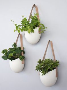 Porcelain Leather Hanging Containers: Gardenista