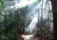 Go beyond the physical. In Australia in May (or would like to be) check out this weekend Yoga, Meditation & Mindfulness Weekend Retreat at gorgeous Mangrove Mountain.