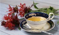 Natural, herbal remedies for your stomach ache from The Old Farmer's Almanac ache food upset upset health upset remedies ache Dandelion Benefits, Dandelion Root Tea, Dandelion Jelly, Herbal Remedies, Health Remedies, Natural Remedies, Holistic Remedies, Reading Tea Leaves, Tea Reading