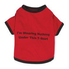 Zack & Zoey Polyester/Cotton Nothing Under This Shirt Dog Tee, Medium, Red - http://www.thepuppy.org/zack-zoey-polyestercotton-nothing-under-this-shirt-dog-tee-medium-red/