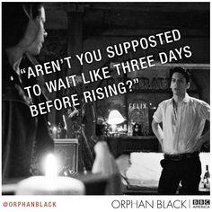 Orphan Black - Felix