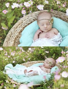 Stacie Eldredge Photography: babies