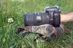 Macro photography tips: all pro tips in macro ,