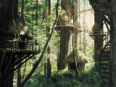 Tree House-Star Wars-The Ewok Village on Endor
