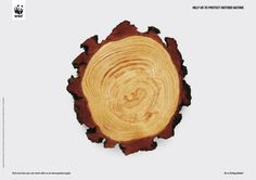 WWF: Mother nature