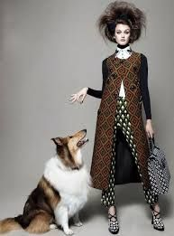 fashion photography with dogs