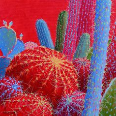 Cactus Paintings by Sharon Weiser - Turquoise Tortoise Art Gallery Cactus Drawing, Cactus Painting, Cactus Art, Cactus Pics, Southwest Quilts, Southwestern Art, Art Floral, Illustration Cactus, Crayons Pastel