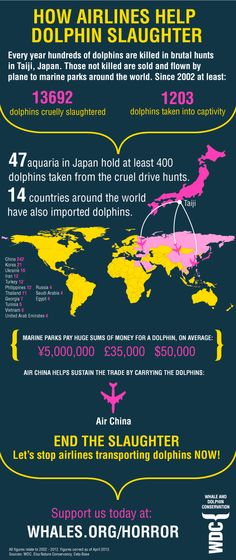 TELL AIRLINES TO STOP TRANSPORTING DOLPHINS TO MARINE PARKS (PLEASE SIGN & SHARE) click the link to sign