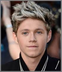Image result for niall horan